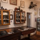 The Dunedin Museum of Natural Mystery by Alan Dove Photography